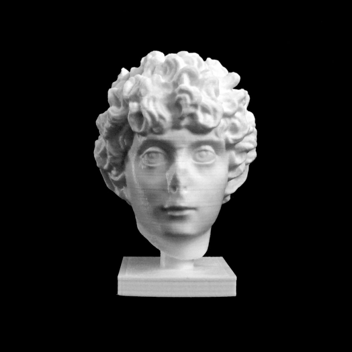 Head of a Roman Youth at The Dallas Museum of Art, Texas