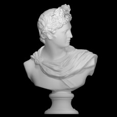 Bust of The Apollo Belvedere at The Reunion des Musees Nationaux, Paris