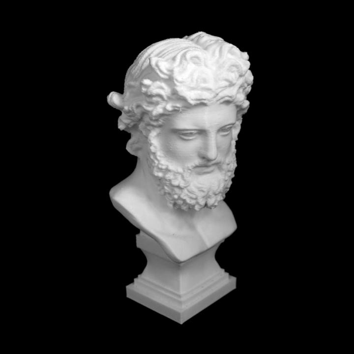Bust of Zeus at The Réunion des Musées Nationaux, Paris