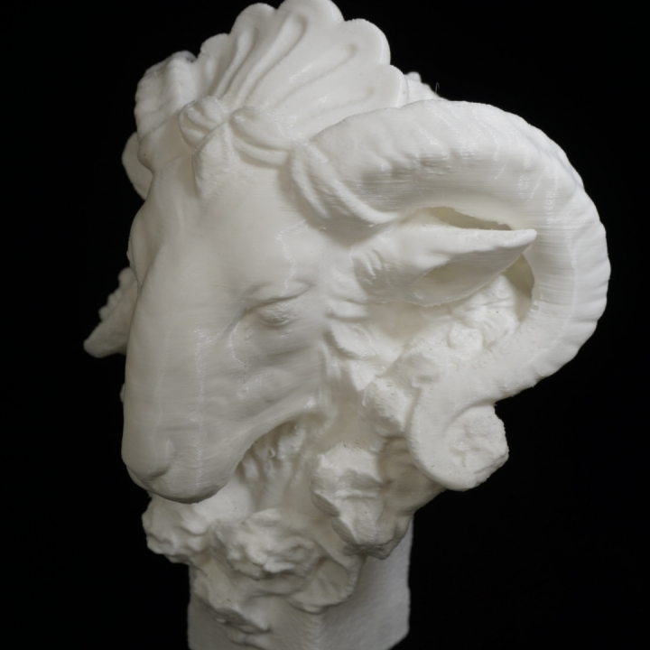 Head of a Ram at The Reunion des Musees Nationaux, Paris