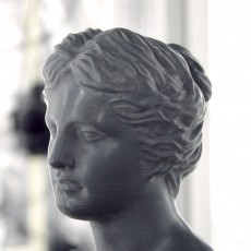 Picture of print of Head of Venus at The Réunion des Musées Nationaux, Paris 这个打印已上传 Scan The World