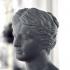 Head of Venus at The Réunion des Musées Nationaux, Paris print image