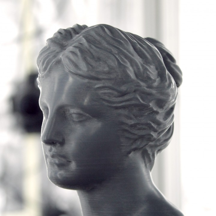 Picture of print of Head of Venus at The Réunion des Musées Nationaux, Paris This print has been uploaded by Scan The World