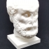Marble Head of a Philosopher at The Metropolitan Museum of Art, New York image