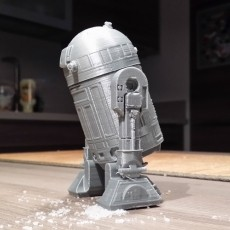 R2D2 Salt and pepper shaker