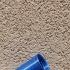 Geocaching Capsule Design 1 print image