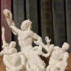 Picture of print of The Laocoön Group at The Vatican Museums, Vatican City