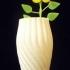 Beautiful Twisted Flower Vase image