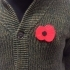 Remembrance Day Poppy image