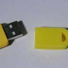 USB memory stick holder with bumps