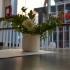 Minimalistic Self watering Planter image