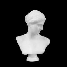 Bust of Venus of Arles at The Louvre, Paris
