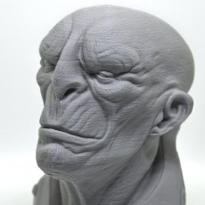 Picture of print of General Zhil Sci-Fi Bust