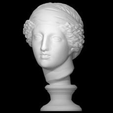 Head of Venus at The Reunion des Musees Nationaux, Paris