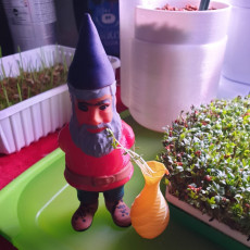 Picture of print of Garden Gnome!