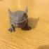 Frog Beast image