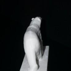White Bear at The Middelheim Museum, Antwerp