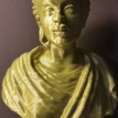 Picture of print of Bust of an African Woman at The Wallace Collection, London