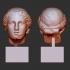 Female Head at The British Museum, London image