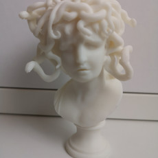 Picture of print of Bust of Medusa at The Musei Capitolini, Rome