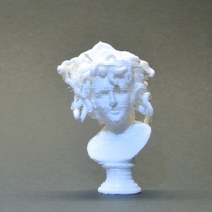 Bust of Medusa at The Musei Capitolini, Rome