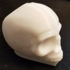 Picture of print of SIMPLE HAND WASH SKULL (Unilever)