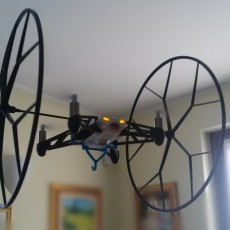 Picture of print of Support Cargo Rolling Spider
