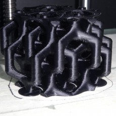 Picture of print of Duble-Diamond mutual structure