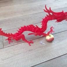 3d Dragon puzzle