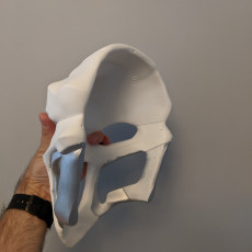 Picture of print of OverWatch's Reaper Mask!