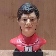Picture of print of Bust of Ayrton Senna