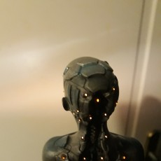 Picture of print of Female scifi bust
