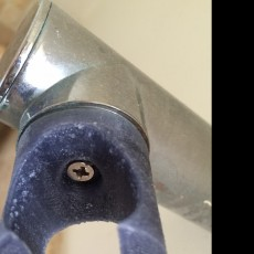 Picture of print of Shower Clip