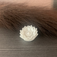 Picture of print of Lotus Flower Pendant