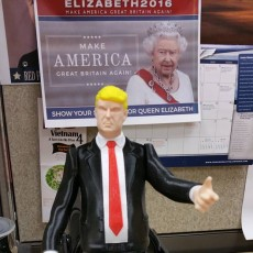 Picture of print of DONALD TRUMP ACTION FIGURE! This print has been uploaded by James Clapper