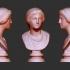Head of Artemis at The State Hermitage Museum, St Petersburg image