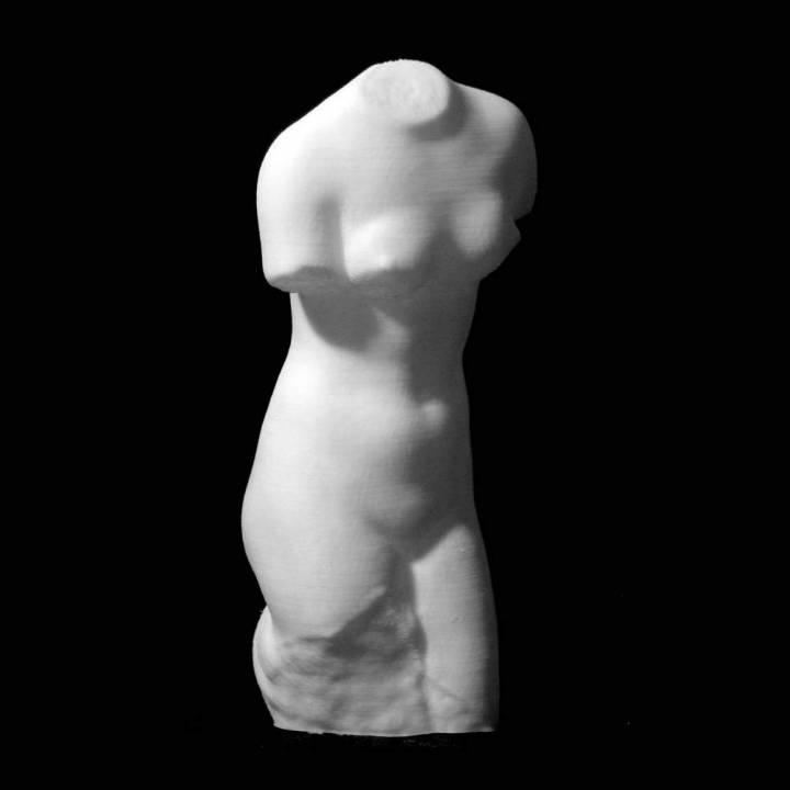 A Torso of Venus at The Barber Institute, Birmingham