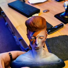 Picture of print of David Bowie Bust