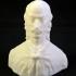 Bust of Ion Oarga Closca in Deva, Romania image
