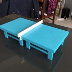 Table de ping pong 30 x15 cm