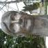 Márta Károlyi bust in Deva, Romania image