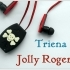 Triena Hi-Fi Bluetooth headset case image