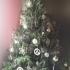 Euro christmas tree ornaments image