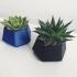 Geometric planter image
