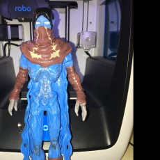 Picture of print of Soul Reaver Raziel