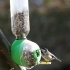 Upcycled Bird Feeder image