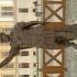 Caracalla at The Lapidarium, Alba Iulia image