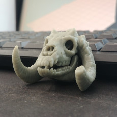 Picture of print of 'Sleeping Bag' Mini Skull Charm, by 3DKitbash