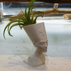 Picture of print of Queen Nefertiti Mini Planter
