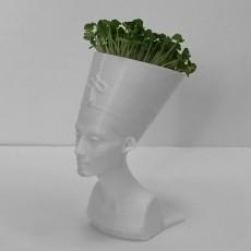 Queen Nefertiti Mini Planter